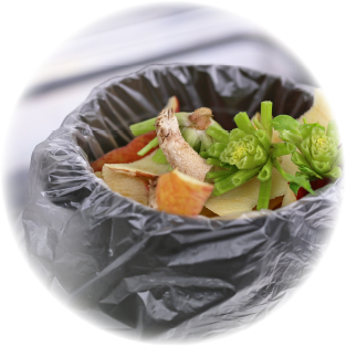 菌の増殖しやすいキッチンの生ゴミに